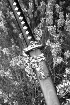 Pihenő kard